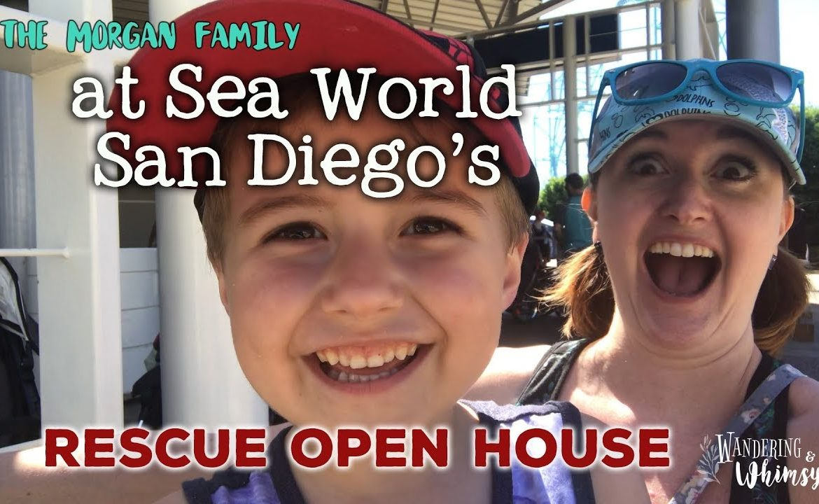 A Tour of Sea World San Diego's Rescue Facilities