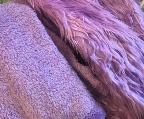 A close up of purple fur material